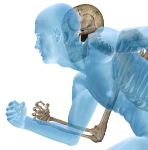 bigstock-Anatomy-concept-or-conceptual--40058131